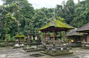 Balinese Hinduism with Destination Asia